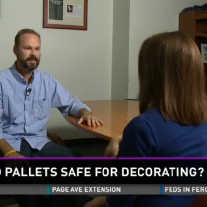 Craig Discusses Concerns About Used Pallets for Decorating Projects